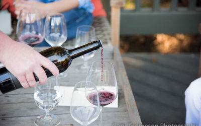 The art of tasting wine in 10 steps