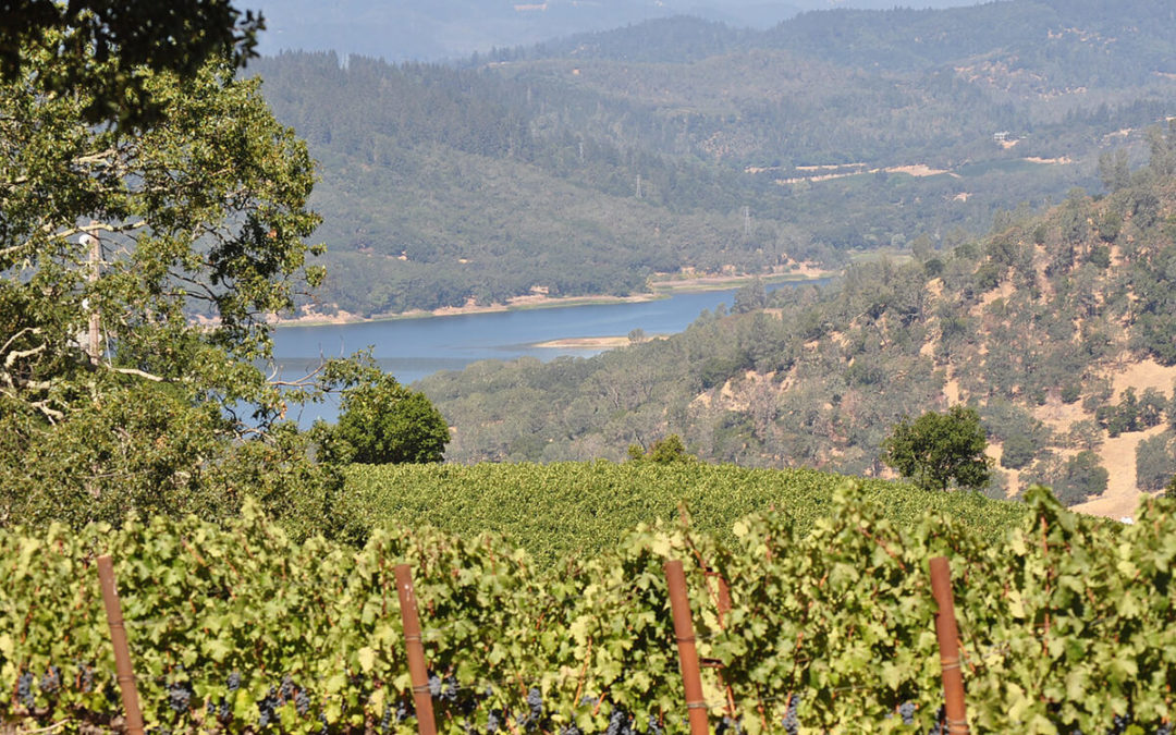 Napa Valley – The Big Picture